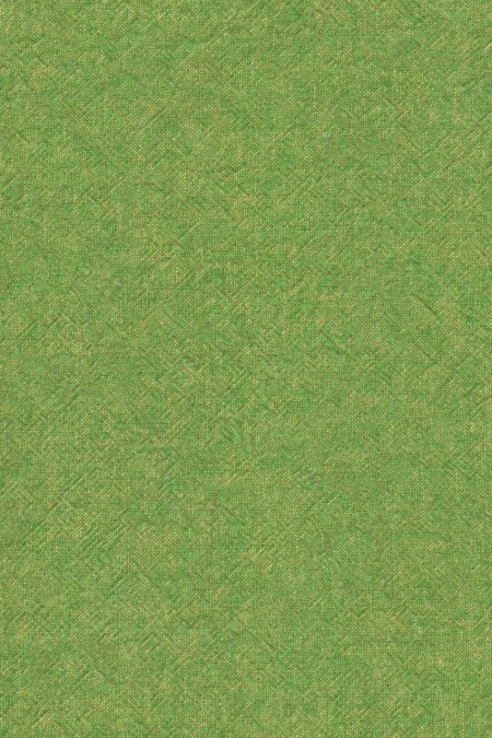 Blago tkanina fabric Annie Sloan english yellow antibes green